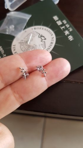 Simple Fashion 925 Sterling Silver Crystal Lightning Stud Earrings Women Exquisite Girlfriend Jewelry Accessories photo review